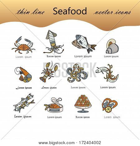 Seafood color vector icons set. Symbols of various delicacies - oyster, cancer, molluscs, mussels, eel, caviar, anchovies, octopus and dorado.