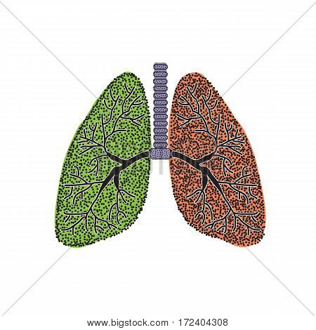 Lungs. The structure of the human lung. Vector illustration on isolated background.