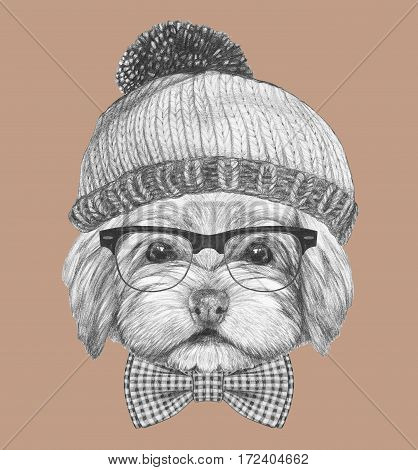 Portrait of Havanese  with glasses, hat and bow tie. Hand drawn illustration.