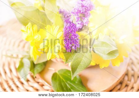 Blurred abstract spring natural background with yellow flowers, Selective Focus, copy space