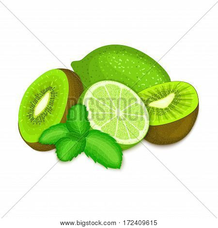 Composition of kiwi, lime and mint leaves. Ripe vector kiwifruits and green lemon with fresh pepper mint leaf appetizing looking. Tropical fruits for design packaging of juice breakfast, healthy food.
