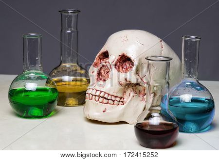 Photo of human's scull in laboratory closeup shooting