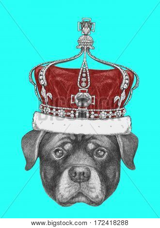 Portrait of Rottweiler with crown. Hand drawn illustration.