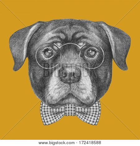 Portrait of Rottweiler with glasses and bow tie. Hand drawn illustration.