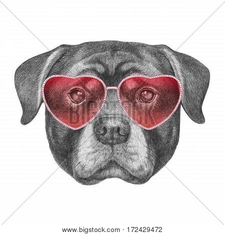 Portrait of Rottweiler with heart shaped sunglasses. Hand drawn illustration.