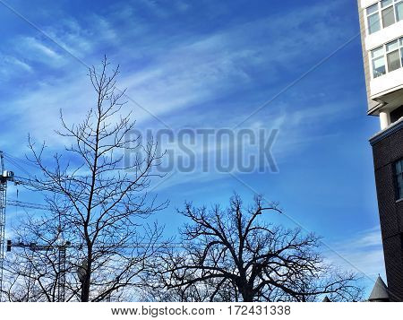 blue sky on a crisp winter day with a white building on the side