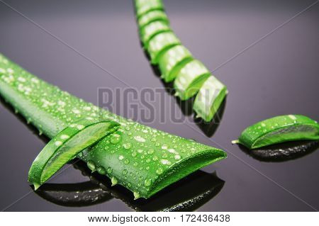 Aloe vera gel with aloe vera leaves on wooden table. Natural cosmetic ingredients. Fresh aloe vera plant on wooden board close-up.