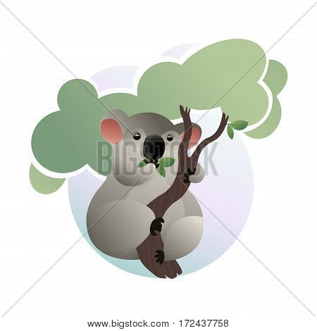 Hand drawn portrait of koala having meal. Illustrated cartoon koala. Vector illustration. Wild illustrated animals