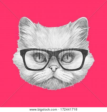 Portrait of Persian Cat with glasses. Hand drawn illustration.
