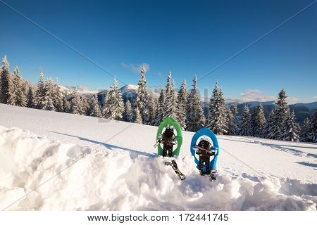 Colored Snowshoes Standing In Deep Snow