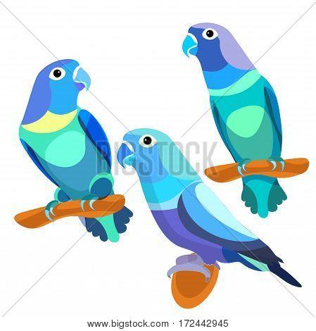 Parrot Lovebirds Couple Sitting Head Turned Blue. Vector Illustration