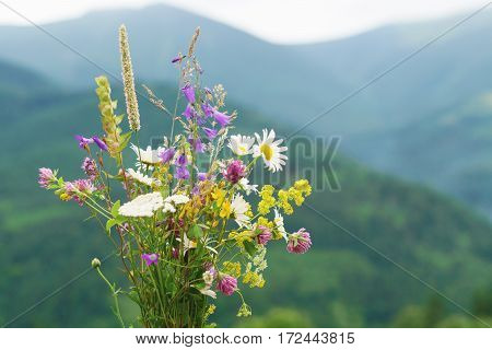 Wild flowers abd herbs bouquet over mountains background.