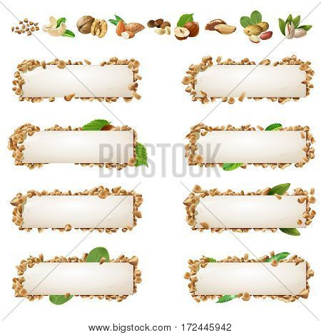 Set of decorative horizontal banners and icons different kinds of nuts. Vector illustration in a realistic style.