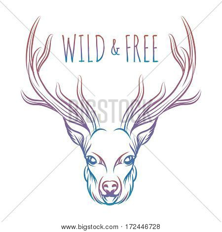 Hand drawn colorful deer and lettering sign wild and free. Vector isolated deer for prints stickers etc