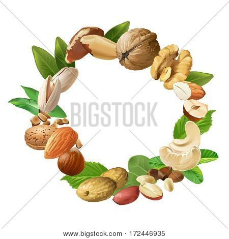 Vector illustration of nuts - cashews, walnuts, almonds, pine nuts, hazelnuts, brazil nuts peanuts pistachio are arranged in a circular frame
