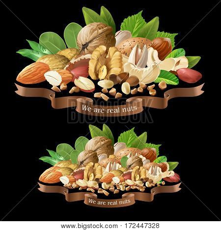 Vector illustration of a mix of different types of nuts on a black background