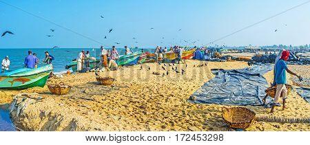 Panorama Of Fishing Port In Negombo