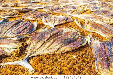 The Main Fishermen's Food