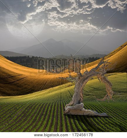 Peaceful Landscape with Mountain  3D Rendered  Some elements provided courtesy of NASA