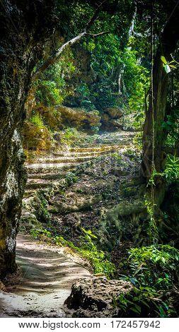 Stone staircase leading through tropical forest to Tembeling Beach, Nusa Penida Bali Indonesia