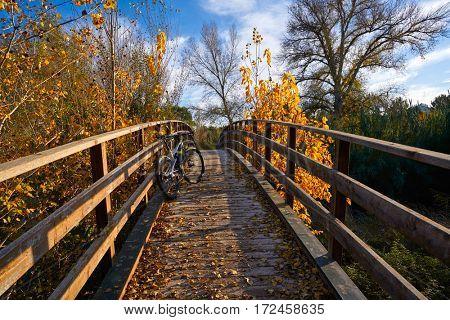 Sunset bike on autumn fall wood bridge at Parque de Turia of Valencia park in spain