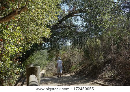Mature woman walking on dirt trail under large arching oak tree, filtered sunlight