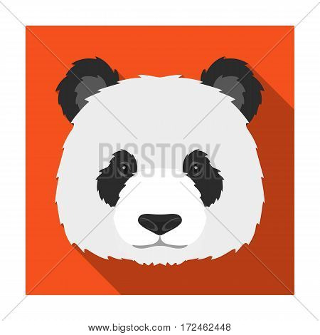 Panda icon in flat design isolated on white background. Realistic animals symbol stock vector illustration.