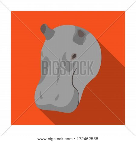 Hippopotamus icon in flat design isolated on white background. Realistic animals symbol stock vector illustration.