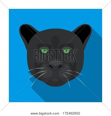 Black panther icon in flat design isolated on white background. Realistic animals symbol stock vector illustration.