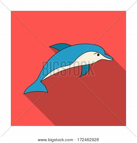 Dolphin icon in flat design isolated on white background. Sea animals symbol stock vector illustration.