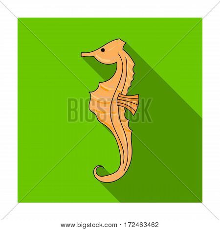 Seahorse icon in flat design isolated on white background. Sea animals symbol stock vector illustration.