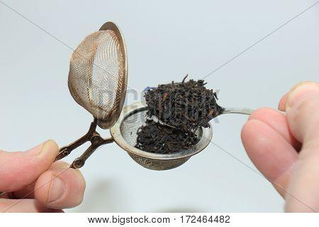Metal tea infuser with dried tea leaves