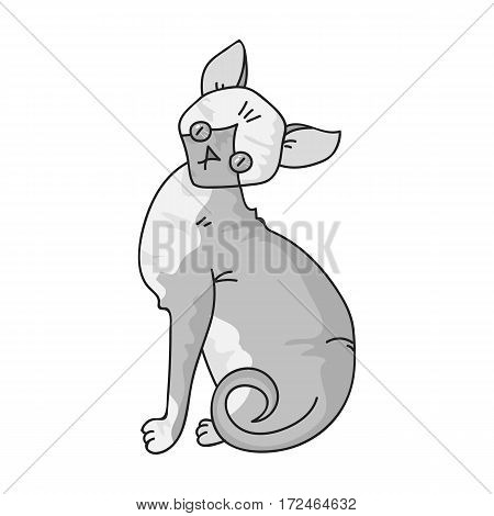 Sphynx icon in monochrome design isolated on white background. Cat breeds symbol stock vector illustration.