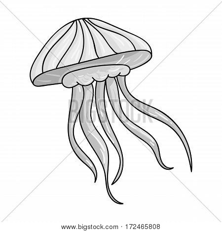 Jelly fish icon in monochrome design isolated on white background. Sea animals symbol stock vector illustration.