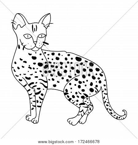 Savannah icon in outline design isolated on white background. Cat breeds symbol stock vector illustration.