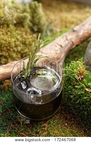 Black cocktail with rosemary on moss, natural drink concept