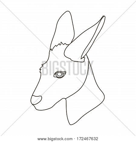 Kangaroo icon in outline design isolated on white background. Realistic animals symbol stock vector illustration.