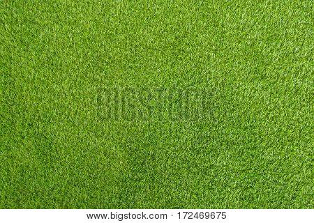 Green Grass Artificial Background