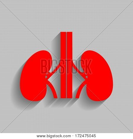 Human kidneys sign. Vector. Red icon with soft shadow on gray background.