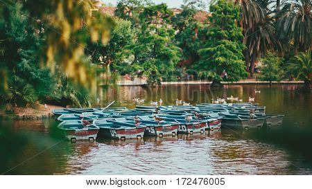 Numerous empty boats in water of city park with many ducks on them recreational water area with birds and multiple old enumerated abandoned wherries on cloudy day in Barcelona Spain