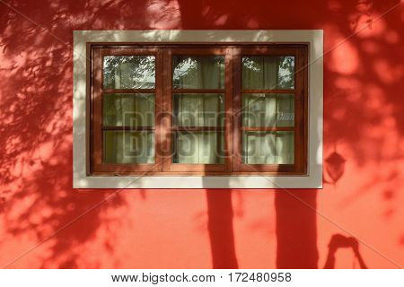 Window Of Red House And Shadow Of Leave And Tree On Wall