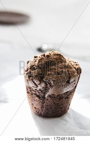 Chocolate muffin sprinkled with cocoa