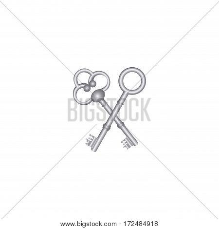 silver old keys icon stock, vector illustration image design