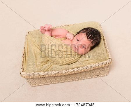 Wrapped from head to toe black-haired baby in a child's basket, resting with eyes opened