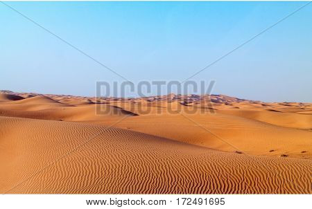 Arabian desert dune background on blue sky. Desert near the city of Dubai. many dunes stretching out into the distance on the background of clear sky