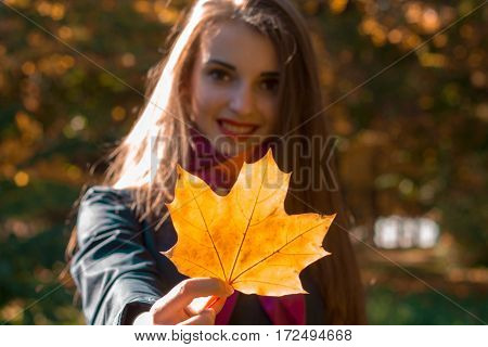 girl stretched straight maple leaf and smiling close-up