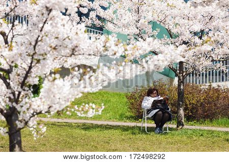 VILNIUS LITHUANIA - MAY 02 2016: Middle age woman sitting under blooming cherry tree reading magazine in Vilnius Lithuania