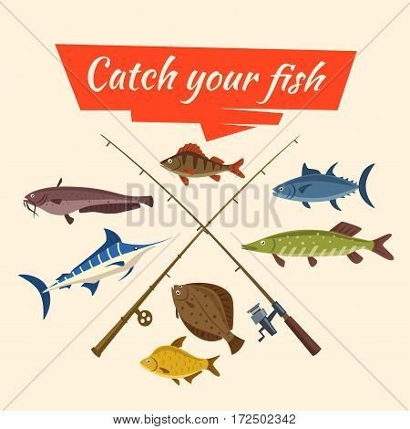 Fishing catch of vector fish sheatfish or catfish, marlin and perch, pike and flounder or salmon, tuna and carp, fisherman rods or fish-rods and fisher tackles baits and floats