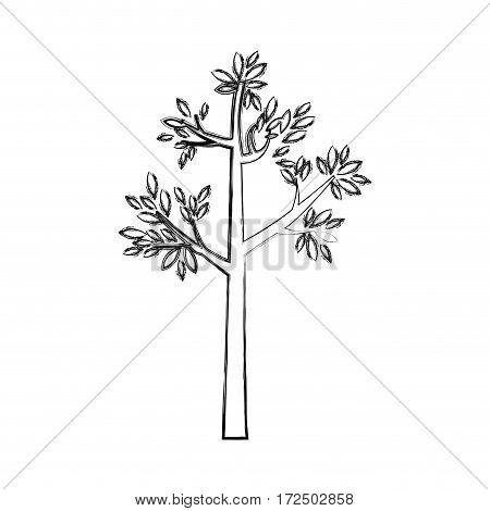 contour tree icon image stock, vector illustation design
