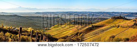 wide panorama of Langhe region in northern italy on autumnunesco heritage
